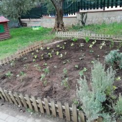 Asilo nido e micronido Dodò - Roma quartiere Lunghezza